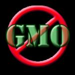 Farkas Sándor: Stratégiai kérdés a mezőgazdaság GMO-mentessége