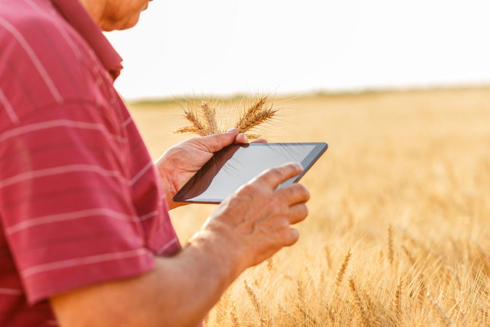 Digitális szolgáltatást indít a Monsanto